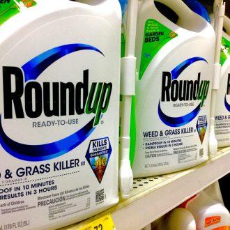 Monsanto commercialise son herbicide controversé depuis 1975. Mike Mozart/Flickr, CC BY