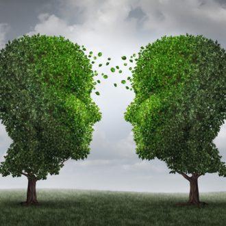 Le mystérieux langage des arbres - Shutterstock